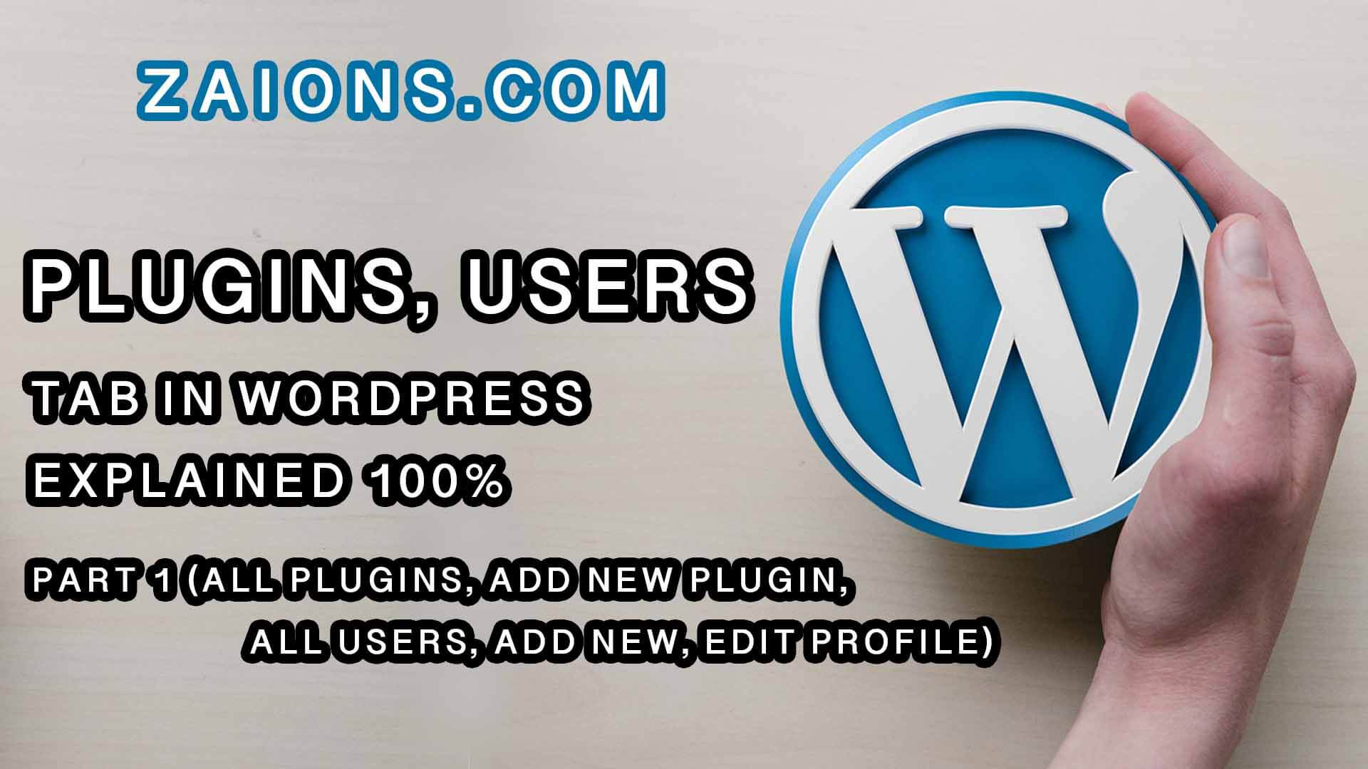 w-Plugins, Users Explained For Beginners